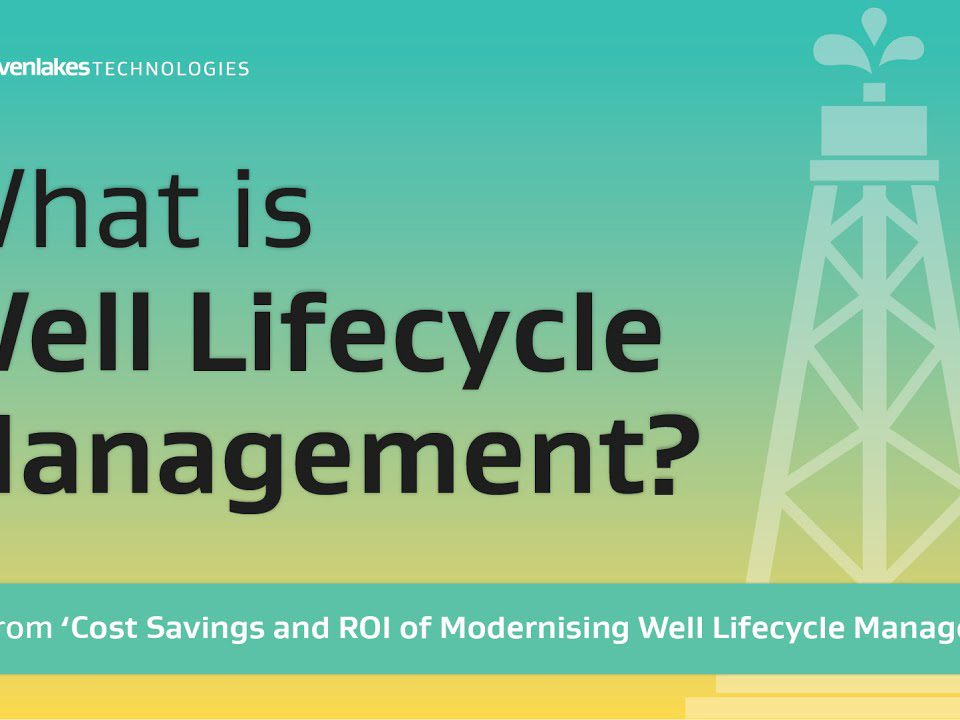 What is lifecycle management